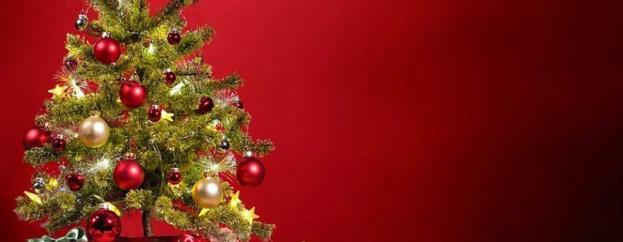 Fröhliche Weihnachten für alle! – Unsere Spendenaktion
